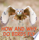 How and Why Do Birds Fly