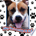 Riley the Lovable Pit Bull