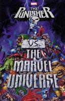 Punisher vs  the Marvel Universe