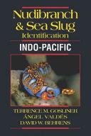Nudibranchs and Sea Slugs Identification