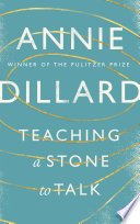 Teaching a Stone to Talk Book