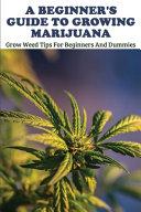 A Beginner s Guide To Growing Marijuana