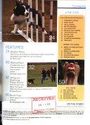 AKC Gazette Book PDF