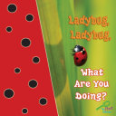 Ladybug, Ladybug, What Are You Doing?