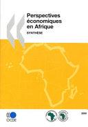 Pdf Perspectives économiques en Afrique 2009 Synthèse Telecharger