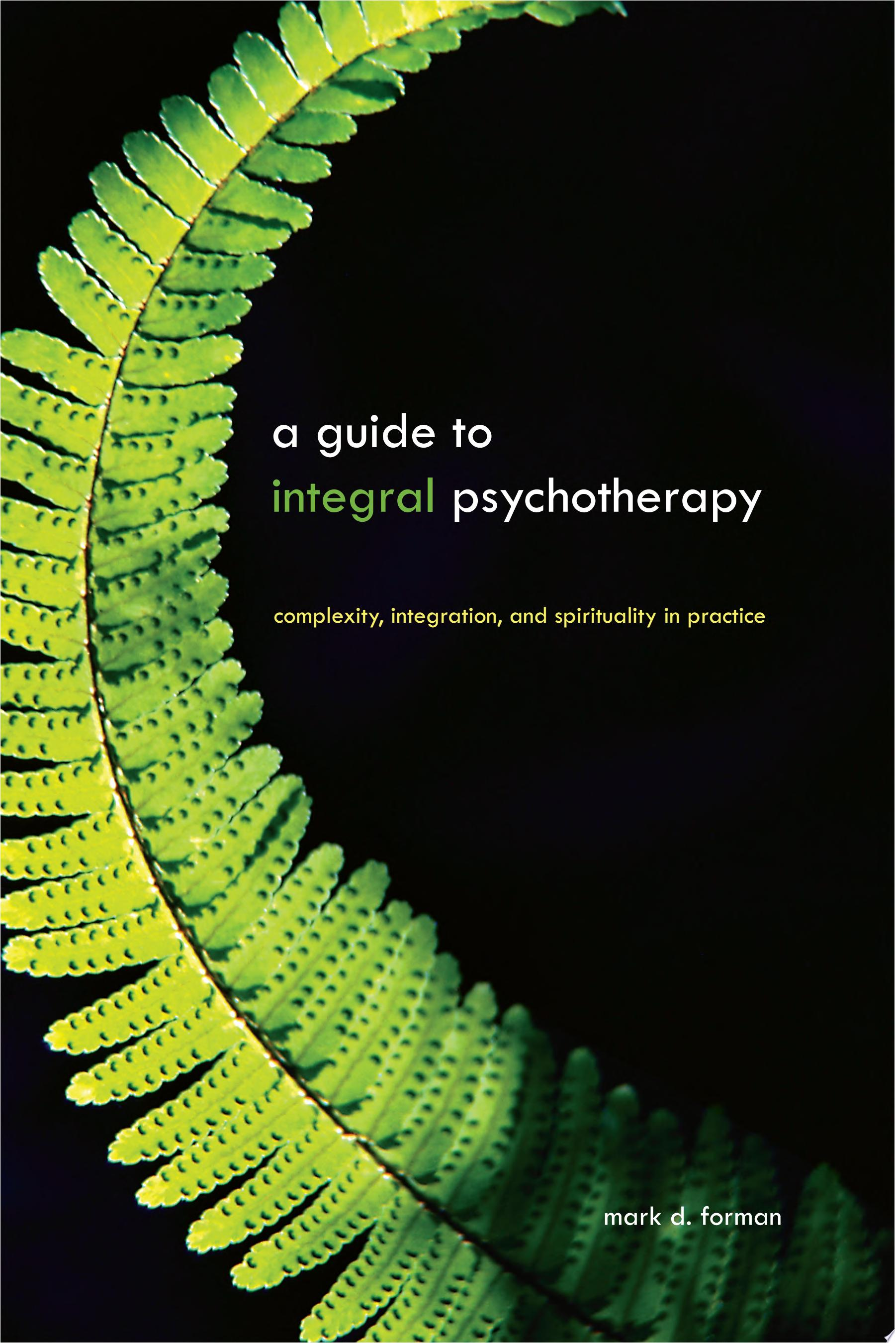 Guide to Integral Psychotherapy  A