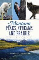 Montana Peaks  Streams and Prairie