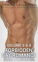 Forbidden Gay Romance Volume 3   4