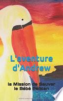 L'aventure d'Andrew