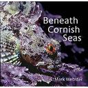 Beneath Cornish Seas
