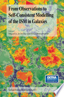 From Observations To Self Consistent Modelling Of The Ism In Galaxies Book