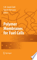 Polymer Membranes for Fuel Cells