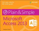 Microsoft Access 2013 Plain   Simple