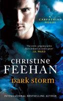 Dark Storm ebook