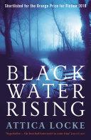 Black Water Rising ebook