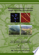 Biohydrometallurgy: From the Single Cell to the Environment