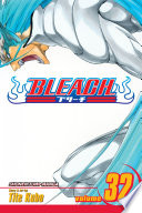 Bleach, Vol. 32