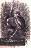 The bird world described with pen and pencil  by W H D  Adams and H  Giacomelli