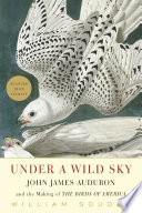 Free Download Under a Wild Sky Book