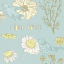I Love Daisy Book