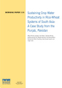 Sustaining crop water productivity in rice wheat systems of South Asia  A case study from the Punjab  Pakistan