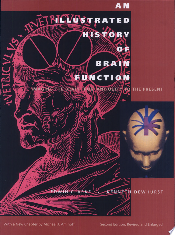An Illustrated History of Brain Fun