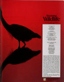 Wyoming Wild Life Book
