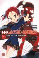 Accel World  Vol  13  light novel