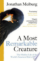 A Most Remarkable Creature