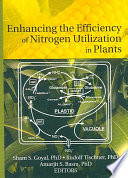 Enhancing the Efficiency of Nitrogen Utilization in Plants