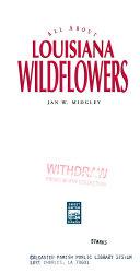 Louisiana wildlflowers