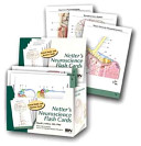 Netter s Neuroscience Flash Cards