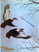 Virginia Wildlife Book