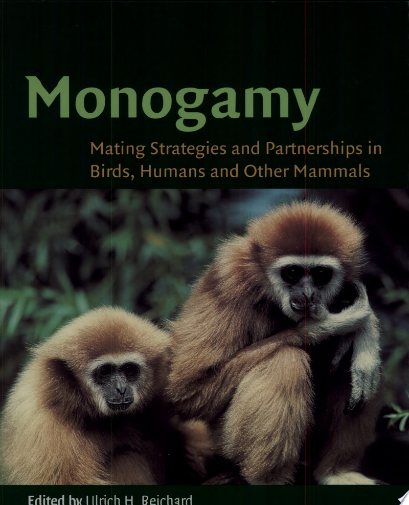 Monogamy banner backdrop
