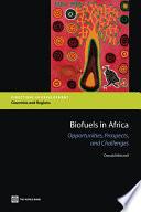Biofuels in Africa