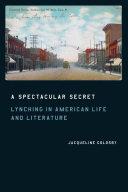 A Spectacular Secret Pdf