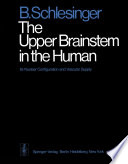The Upper Brainstem in the Human