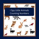 I Spy Little Animals Book