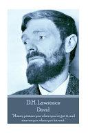 D H  Lawrence   David
