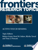 Active Touch Sensing