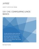 Day One Configuring Junos Basics Pdf/ePub eBook