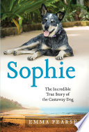 Sophie : the incredible true adventures of the castaway dog