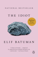 Book cover of The idiot