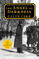 Book cover of The angel of darkness