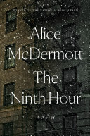 Book cover of The ninth hour