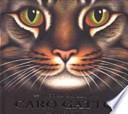 Caro gatto