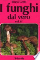 I funghi dal vero. Vol.6