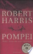 Pompei. 79 d.C. Venti ore alla catastrofe