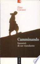 CAMMINANDO   -   Incontri di un viandante