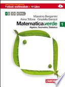 Matematica verde 1. Algebra. Geometria. Statistica. Con espansione online. Per le Scuole superiori